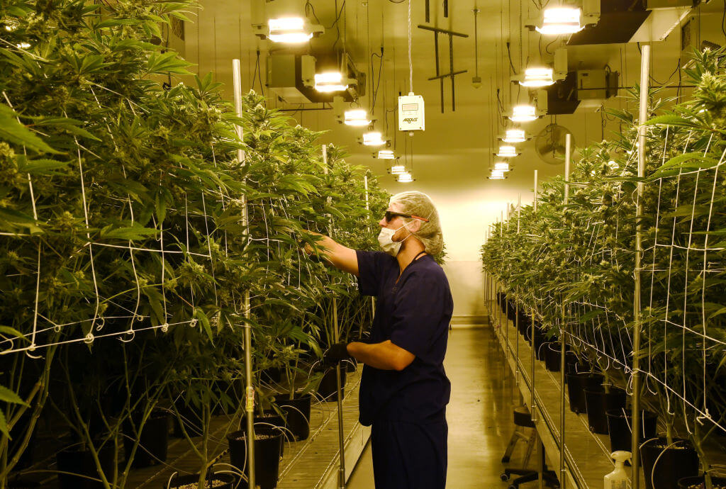Minnesota House approves legalizing recreational marijuana; Senate unlikely to follow